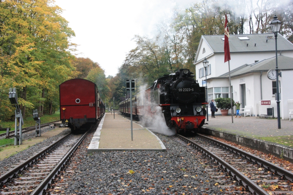 Bahn mecklenburg-vorpommern-ticket single